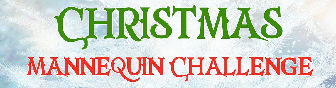Charles Trent Christmas Mannequin Challenge